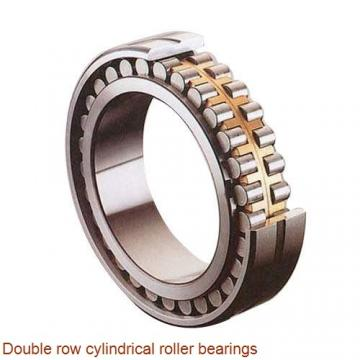NNUP4880 Double row cylindrical roller bearings