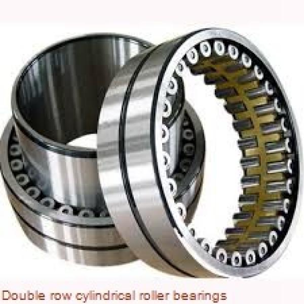 NNU4960 Double row cylindrical roller bearings #1 image